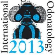 ICO2013_logo
